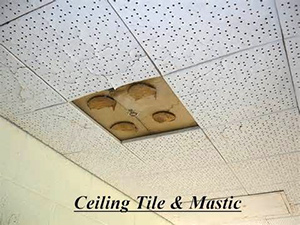 Ceiling Tile With Asbestos